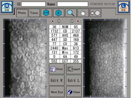 img-microscopia